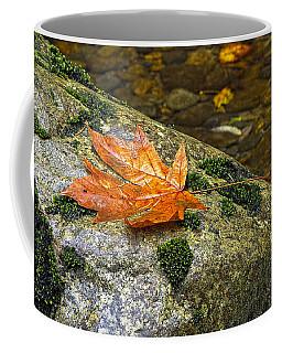 Maple Leaf On A Rock Coffee Mug