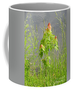 Maple On Lake Coffee Mug by Craig Walters