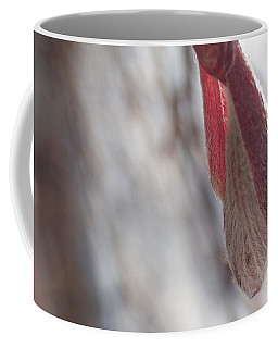 Maple Opening Coffee Mug