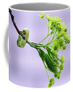 Maple Tree Flowers Coffee Mug