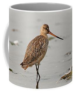 Marbled Godwit - Limosa Fedoa Coffee Mug