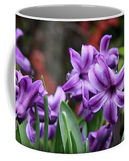 March Hyacinths Coffee Mug