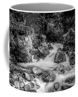 Coffee Mug featuring the photograph Marian Cascade New Zealand Bw by Joan Carroll