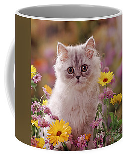 Marigold Chinchilla Coffee Mug