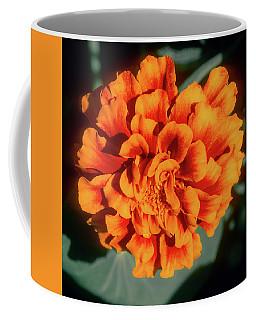 Coffee Mug featuring the photograph Marigold Closeup by John Brink