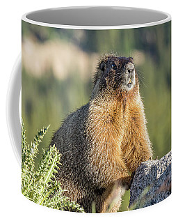 Marmot With An Atitude Coffee Mug