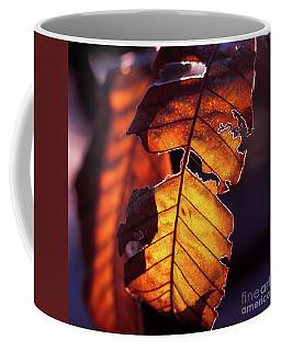 Maron Coffee Mug
