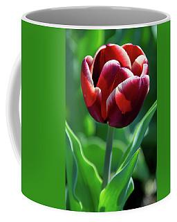 Maroon Tulip Coffee Mug