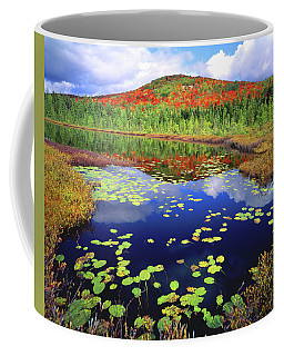 Marsh Pond Coffee Mug