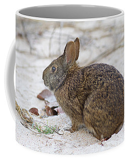 Marsh Rabbit On Dune Coffee Mug