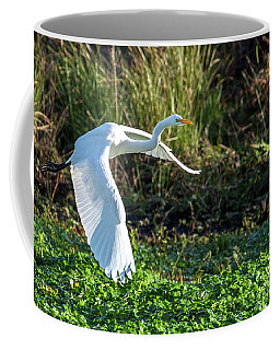 Marshy Flight  Coffee Mug