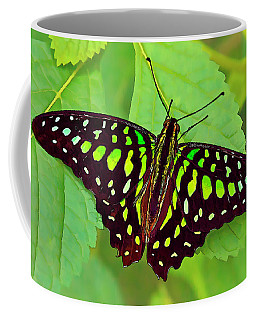 Marvelous Malachite Butterfly 2 Coffee Mug