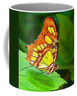 Marvelous Malachite Butterfly Coffee Mug