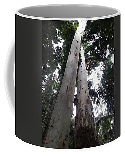 Mary Cairncross Rainforest  Coffee Mug