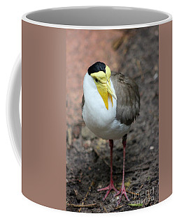 Masked Plover Pose Coffee Mug