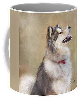Master Of The Domain II Coffee Mug by Colleen Taylor