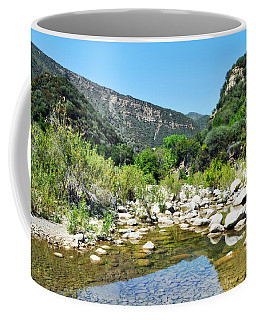 Coffee Mug featuring the photograph Matilija Hot Springs by Kyle Hanson