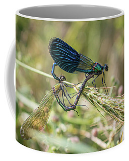 Mating Couple Banded Demoiselle - Calopteryx Splendens Coffee Mug