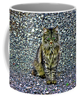 Mattie The Main Coon Cat Coffee Mug