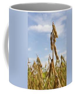 Maturing Soybeans Coffee Mug