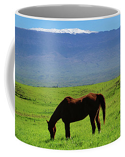 Coffee Mug featuring the photograph Mauna Kea Countryside by Pamela Walton