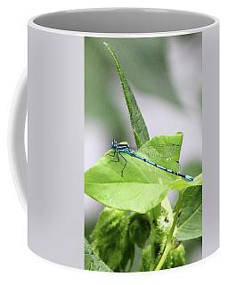 Mayfly Coffee Mug