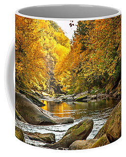 Mcconnell's Mill State Park Coffee Mug by Skip Tribby