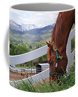 Mccool Grazing Coffee Mug