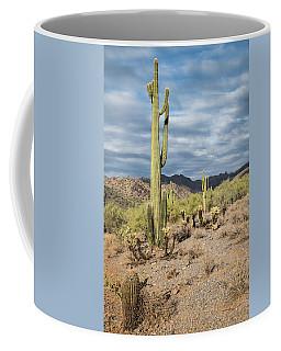Mcdowell Cactus Coffee Mug
