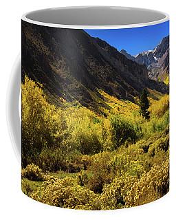 Mcgee Creek Alive With Color Coffee Mug