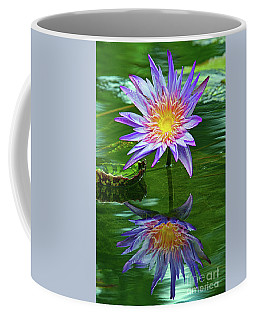 Mckee Water Lily Coffee Mug