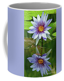 Mckee Waterlily II Coffee Mug