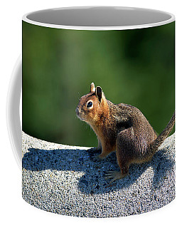 Coffee Mug featuring the photograph Me And My Shadow by Sharon Talson