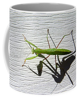 Coffee Mug featuring the photograph Me And My Shadow by Will Borden