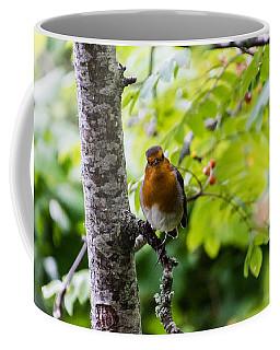 Me Coffee Mug