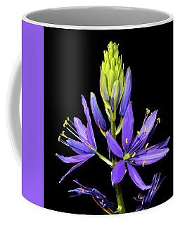 Meadow Hyacinth 002 Coffee Mug by George Bostian