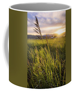 Meadow Light Coffee Mug