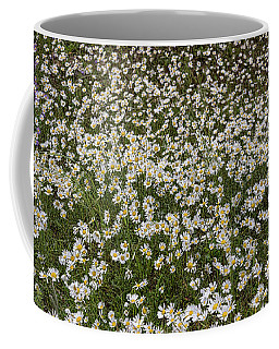 Coffee Mug featuring the photograph Meadow Of Daisey Wildflowers Panorama by James BO Insogna