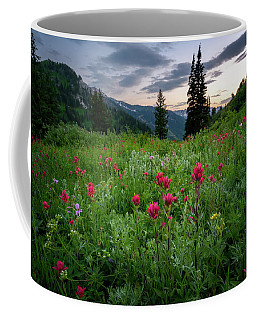 Coffee Mug featuring the photograph Meadow Of Wildflowers In The Wasatch by James Udall
