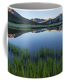Meadow Reflections  Coffee Mug