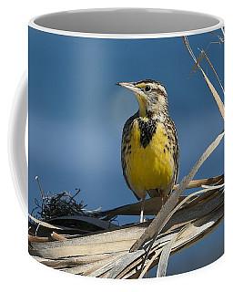 Meadowlark Beauty Coffee Mug