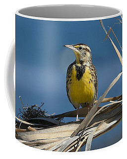 Meadowlark Beauty Coffee Mug