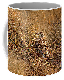 Coffee Mug featuring the photograph Meadowlark Hiding In Grass by Robert Frederick