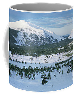 Coffee Mug featuring the photograph Meall A Bhuachaille - Glenmore Forest by Phil Banks