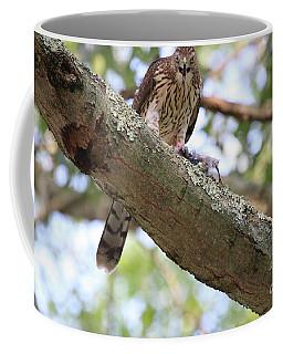 Mean Hawk At Dinner Time Coffee Mug