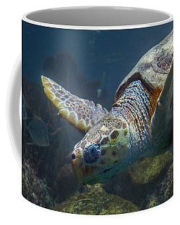 Meandering Green Sea Turtle Coffee Mug
