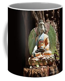 Coffee Mug featuring the photograph Medicine Buddha With Offerings by Carol Lynn Coronios