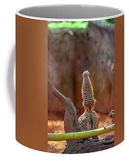Meerkat 2 Coffee Mug