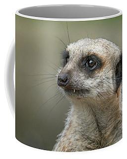 Meerkat Model Coffee Mug