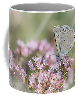 Meleagers Blue Butterfly Coffee Mug